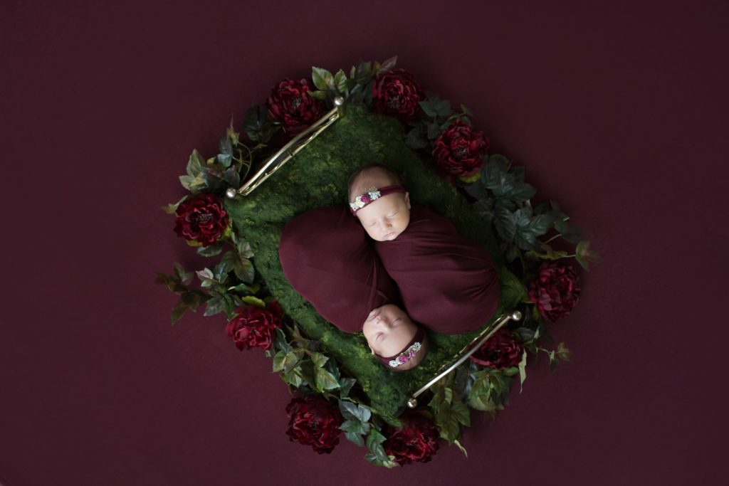 Newborn session Twin Girls with Burgundy and Green Flower Baby Setup at Christmas in Gainesville Florida