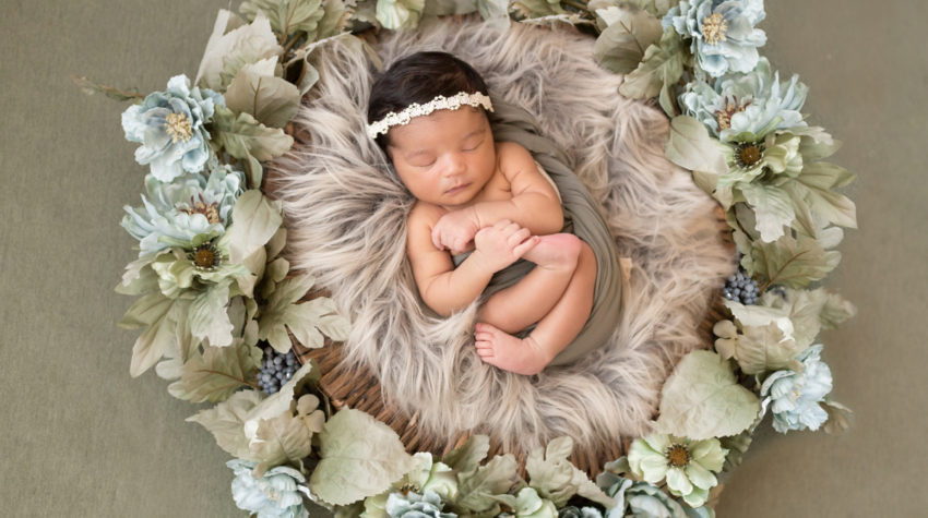 Newborn Girl with Green and Aqua Flower Basket Setup in Gainesville Florida