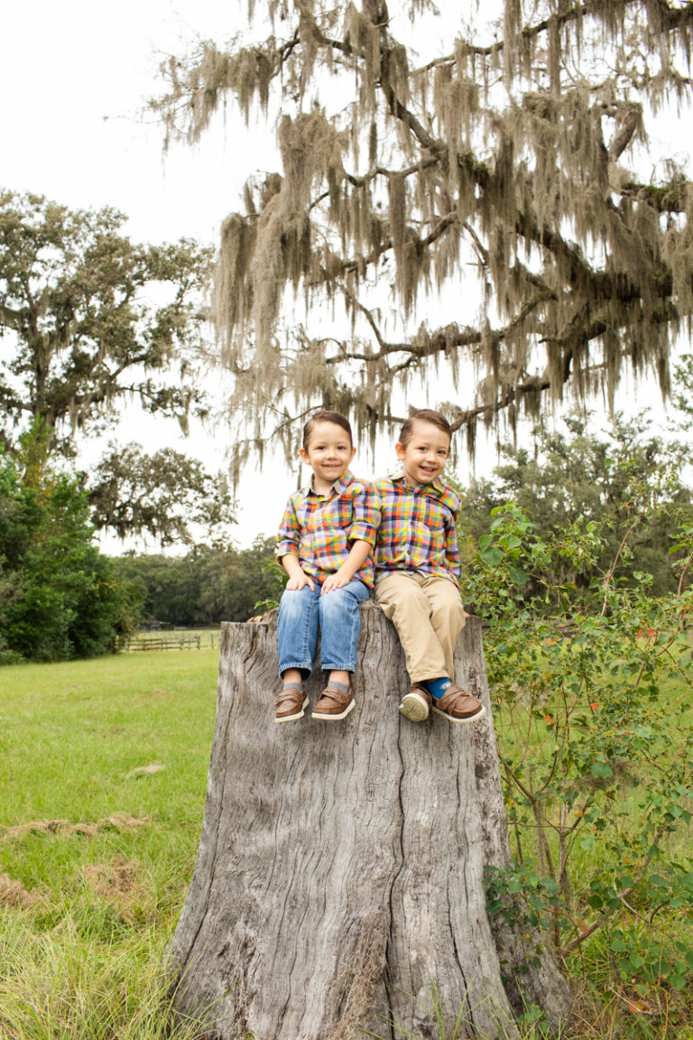 Family Photos Three Year Old Twin Boys big smiles sitting on tree stump at country farm Horseshoe Farm Alachua Florida