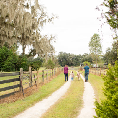 Family Photos with Three Year Old Twin Boys holding hands walking along fence lined dirt road at Horseshoe Farm Alachua Florida
