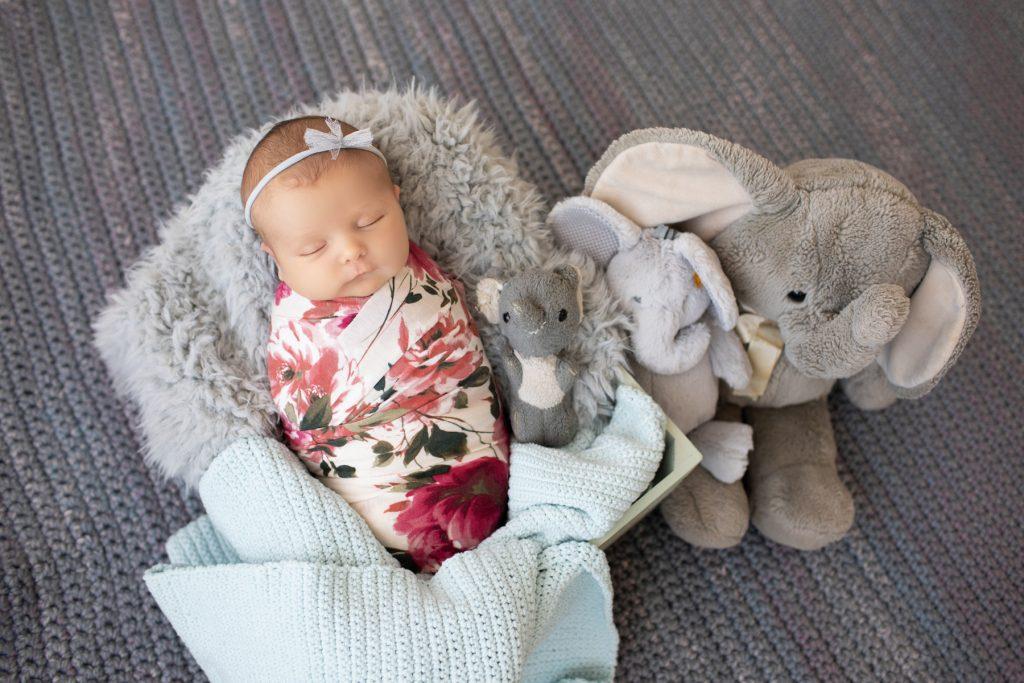 newborn baby elephant toy